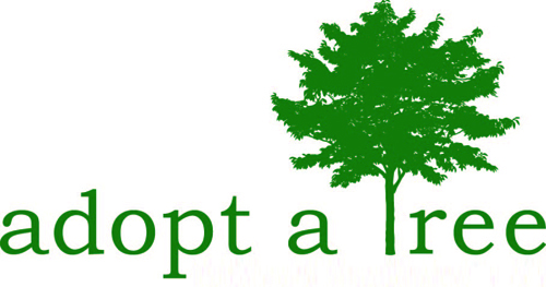 "Design a poster to launch ""Tree Plantation Campaign"" in ..."
