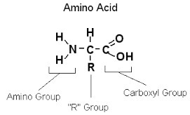 write a statement to explain the molecular composition of In this lesson, you will learn how to write the chemical formulas for both binary ionic compounds and polyatomic ionic compounds when you are given.