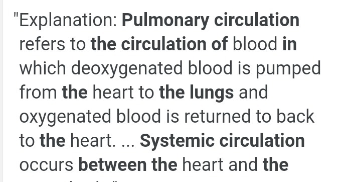 two difference between systemic circulation and pulmonary