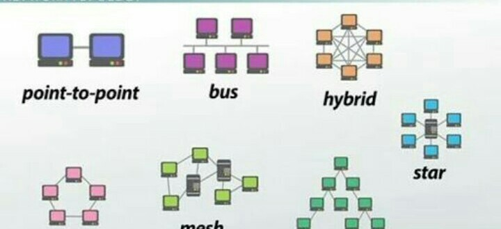 What Is Topology Tell The Types Of Topology Brainly In