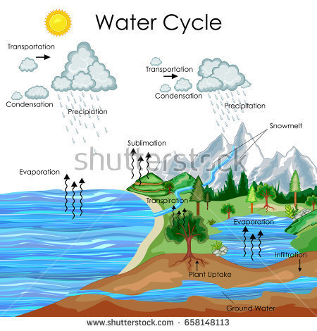 explain the water cycle wing with suitable diagram the water cycle diagram show