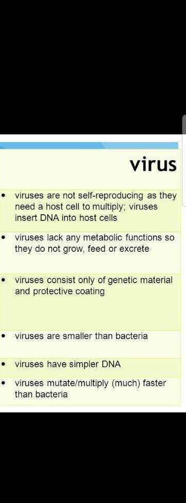 Table of bacteria and virus - Brainly in