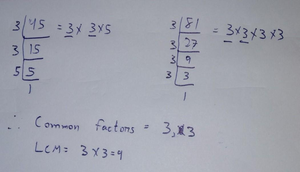 Write All The Common Factor Of 45 81 Brainly In Is 81 a rational number? common factor of 45 81 brainly