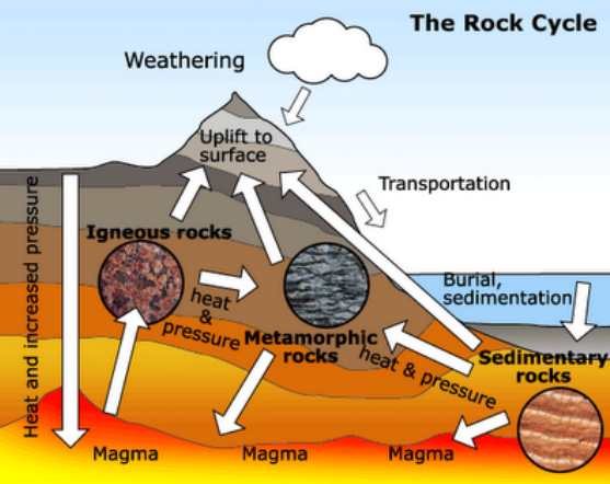 how does sedimentary rocks form? - brainly.in