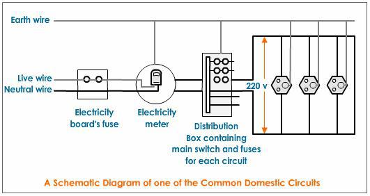 Draw A Schematic Labelled Diagram Of A Domestic Circuit