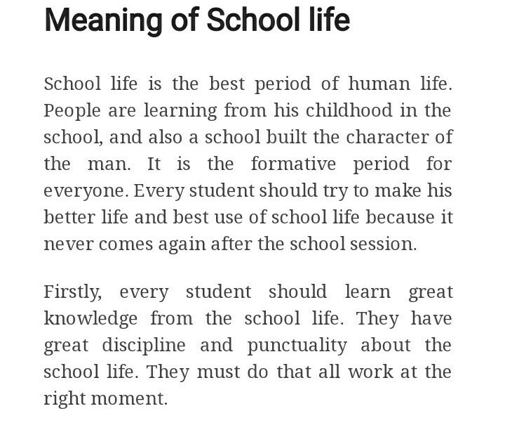Essay about school life
