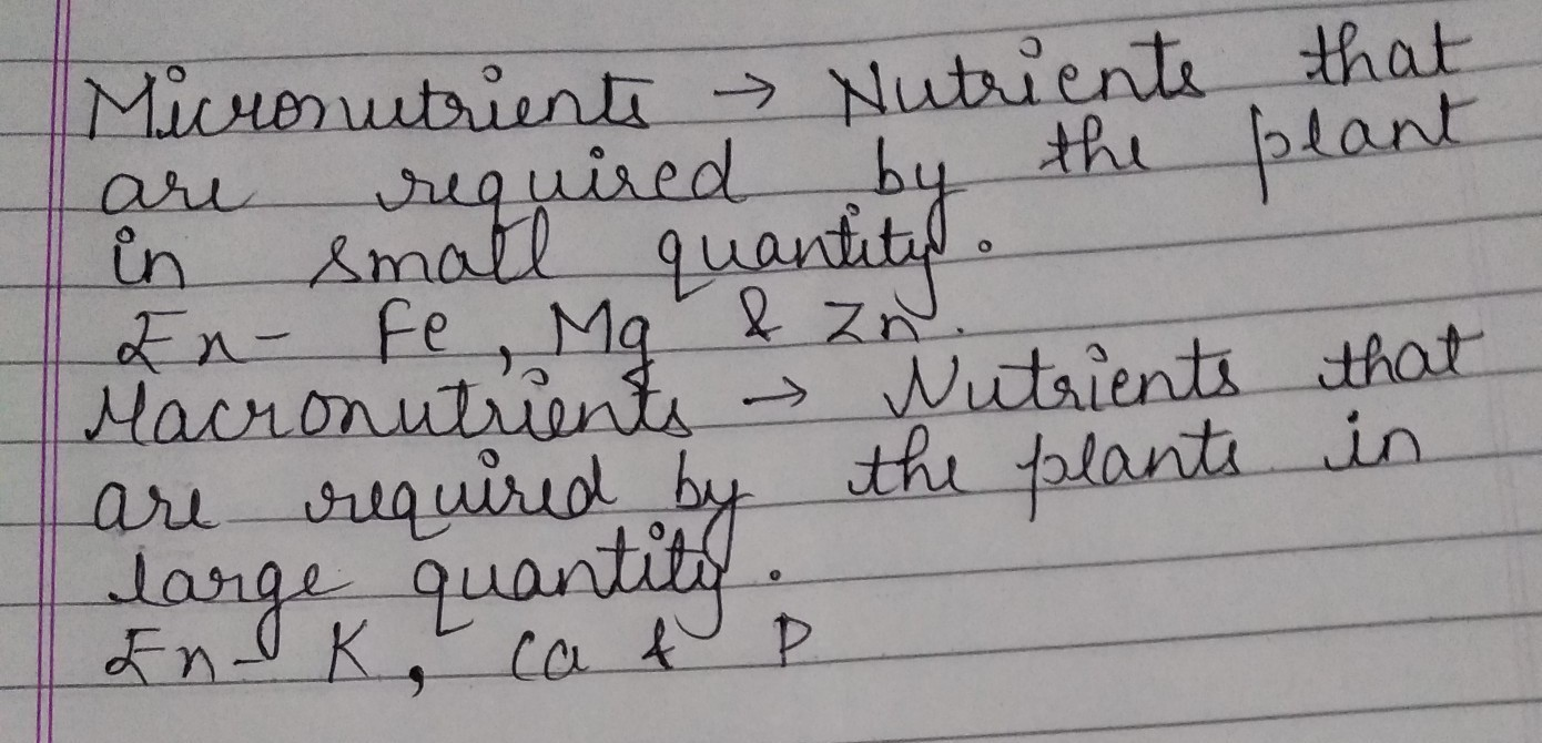 Define Micronutrients And Macronutrients Plz Help Me Anyone Brainly In