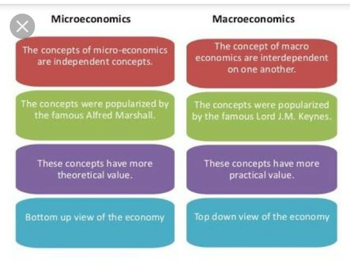 difference between micro and macro economics pdf