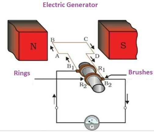 Draw the diagram of a simple electric generator label the following parts  1)rings 2)brushes - Brainly.inBrainly.in