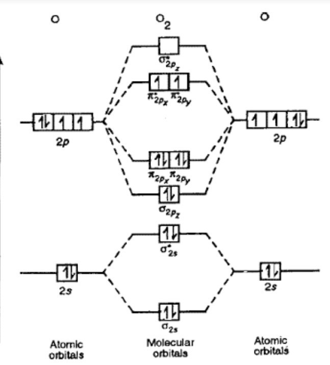 Molecular Orbital Diagram For N2