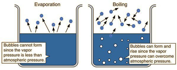 What Is The Difference Between Evaporation And Boiling