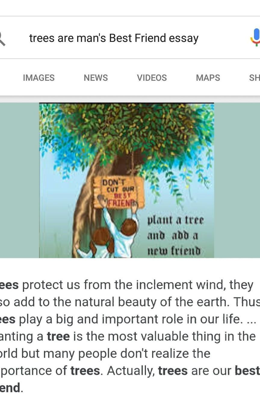 trees are useful to us essay