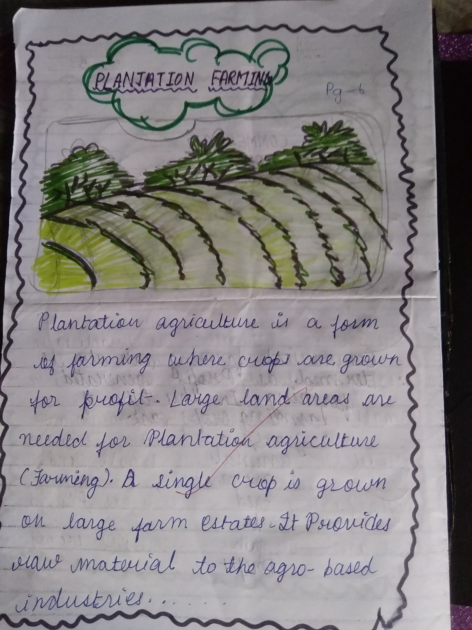 Definition Of Plantation Agriculture Brainly In