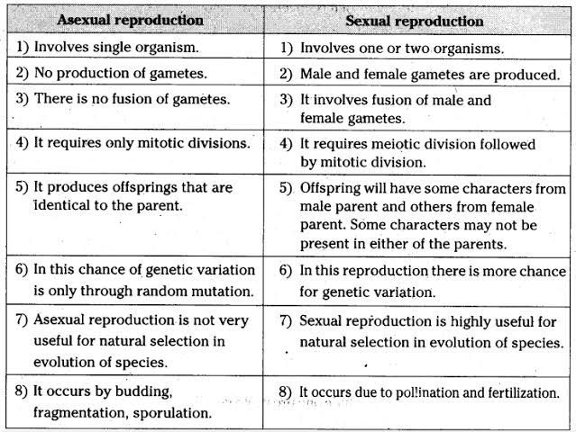 Difference between asexual and sexual reproduction pics 41