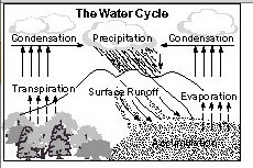 With the help of neat and labelled diagrams explain the hydrological download jpg ccuart Image collections