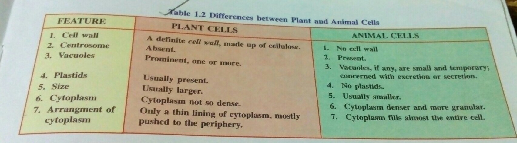 With The Help Of Well Labelled Diagramshighlight Three Differences Plant Cell Diagram Download