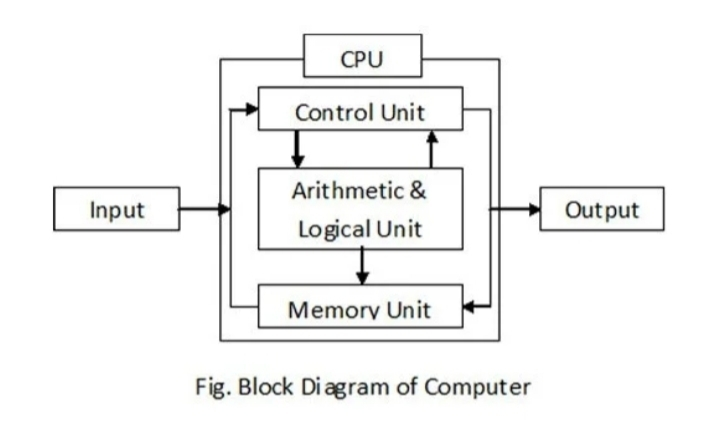 Draw a block diagram of Functional Components of a compute. - Brainly.inBrainly.in
