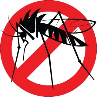 slogan on dengue prevention - Brainly in