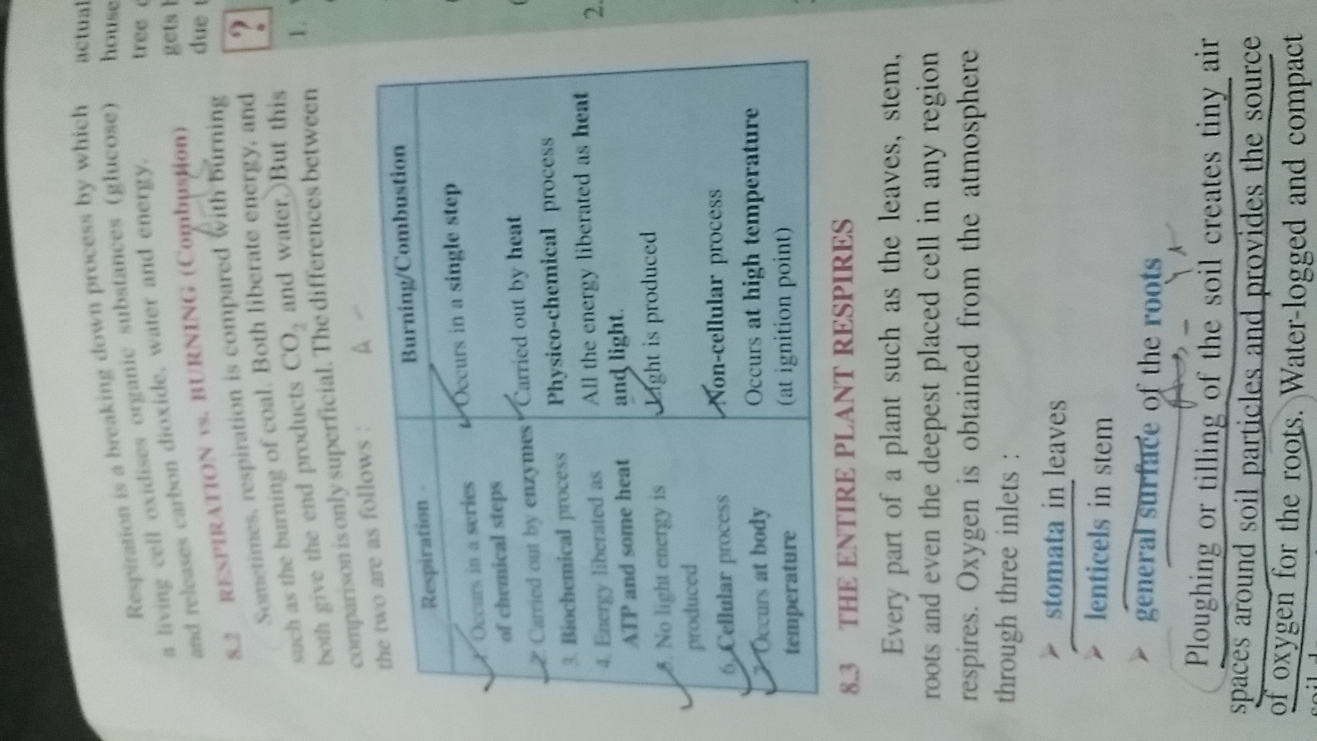similarities between combustion and respiration