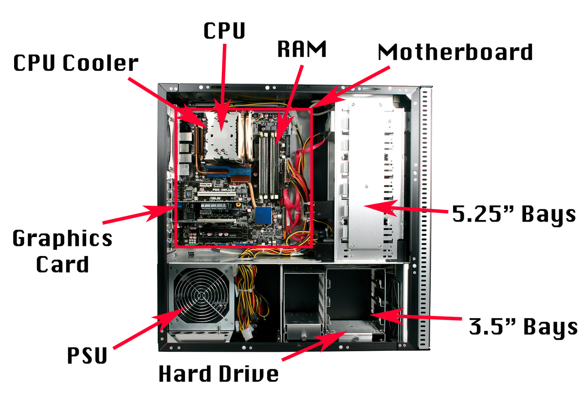 give a labelled diagram of the cpu and it 39 s parts. Black Bedroom Furniture Sets. Home Design Ideas