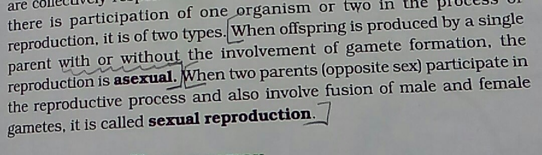 In asexual reproduction how many parents are there
