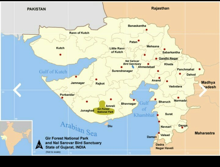 Show The Map Of World.On An Outline Map Of World Show Gir National Park In India Brainly In