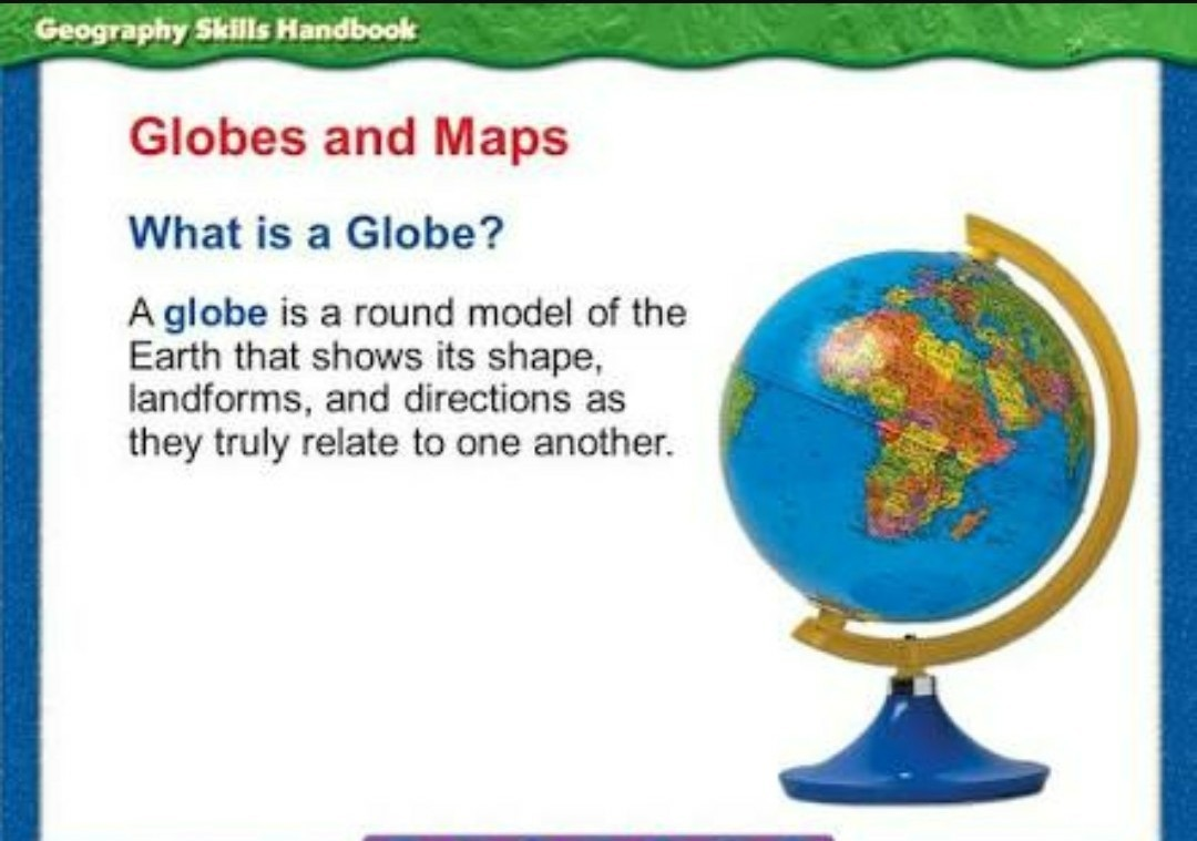 what is a globe brainly in