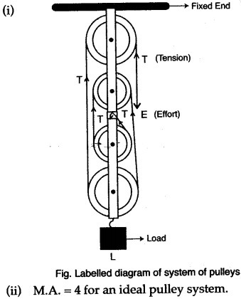 Draw a diagram of a pulley system of velocity ratio 4