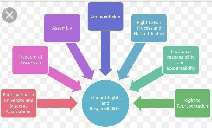 What are your rigts and duties as a student - Brainly.in