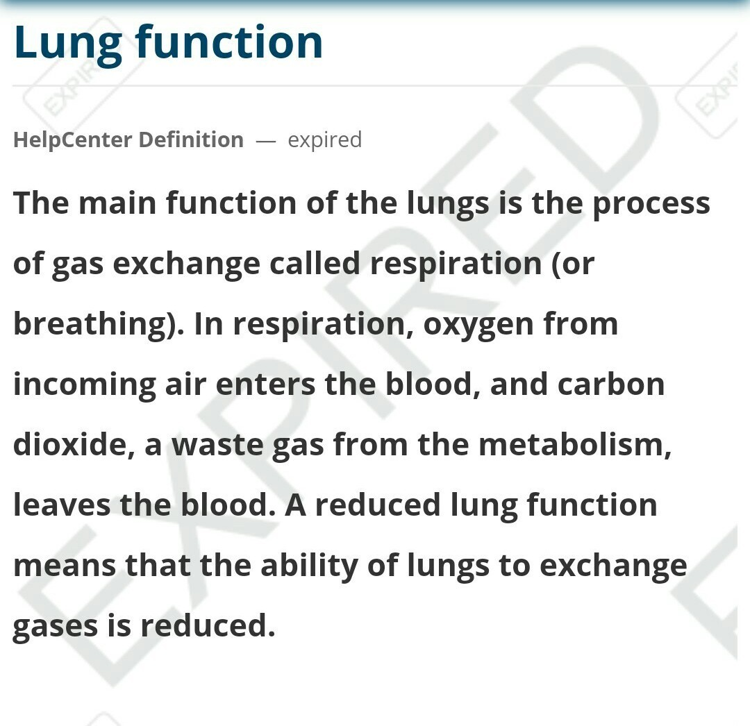 Explain You The Functions Of Lungs In Human Body Brainly