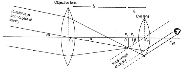 Draw a labelled ray diagram to show the image formation in ...