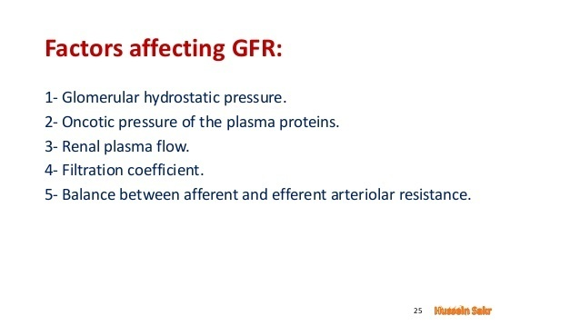 Glomerular filtration rate is determined by the net