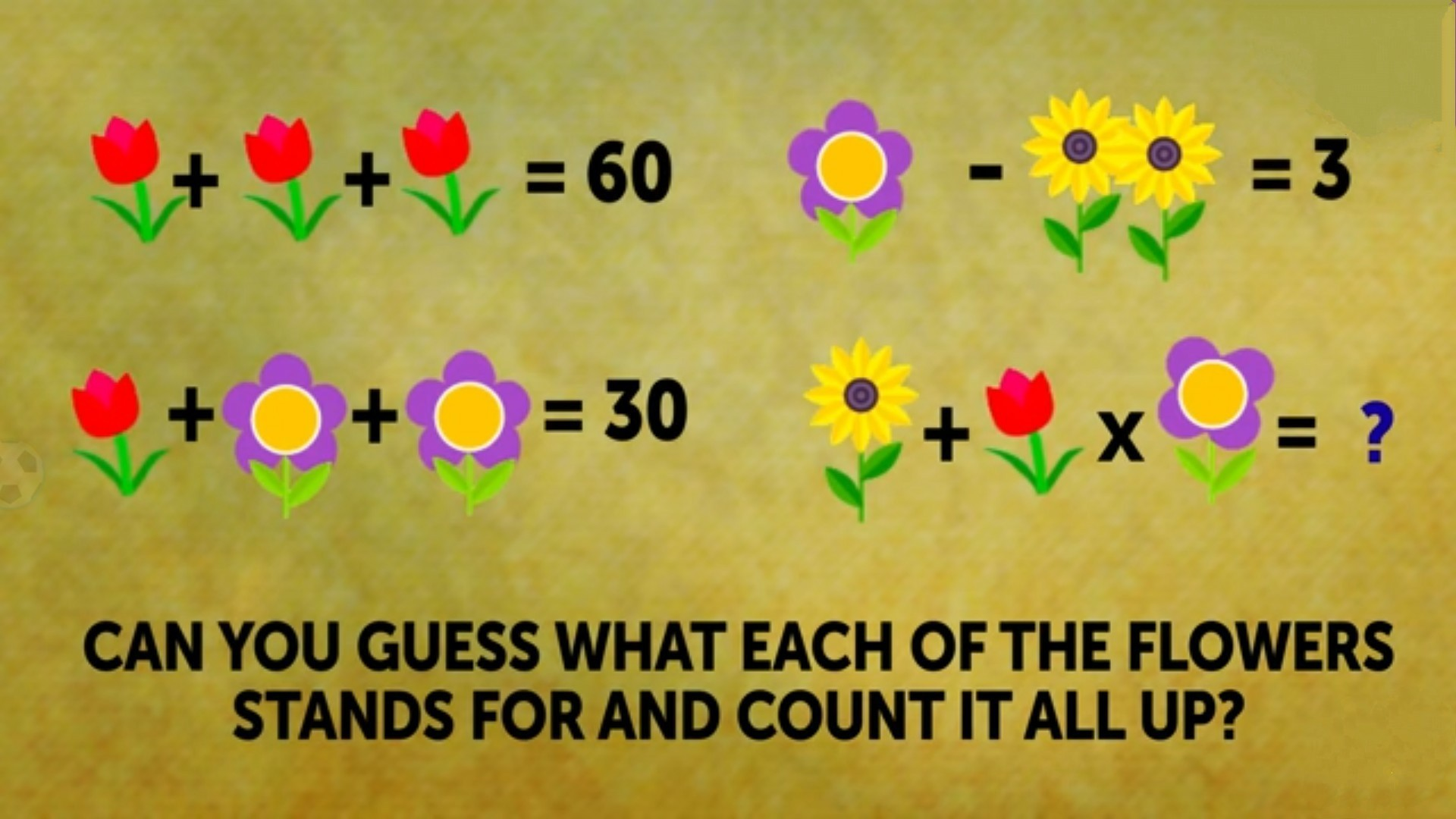 Q  Solve the riddle attached ##No Useless ans  Use your