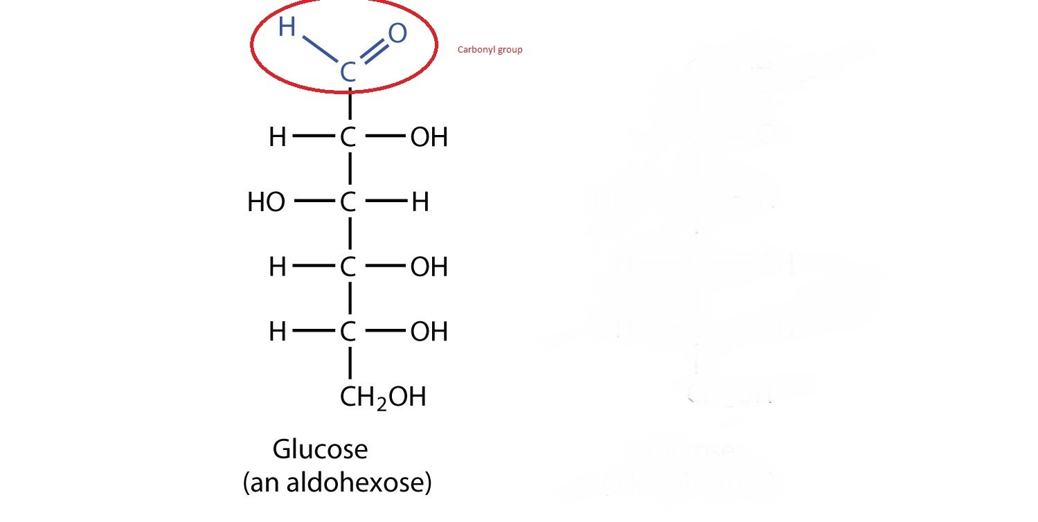 Write A Chemical Reaction To Shoe That Glucose Has A Carbonly Group