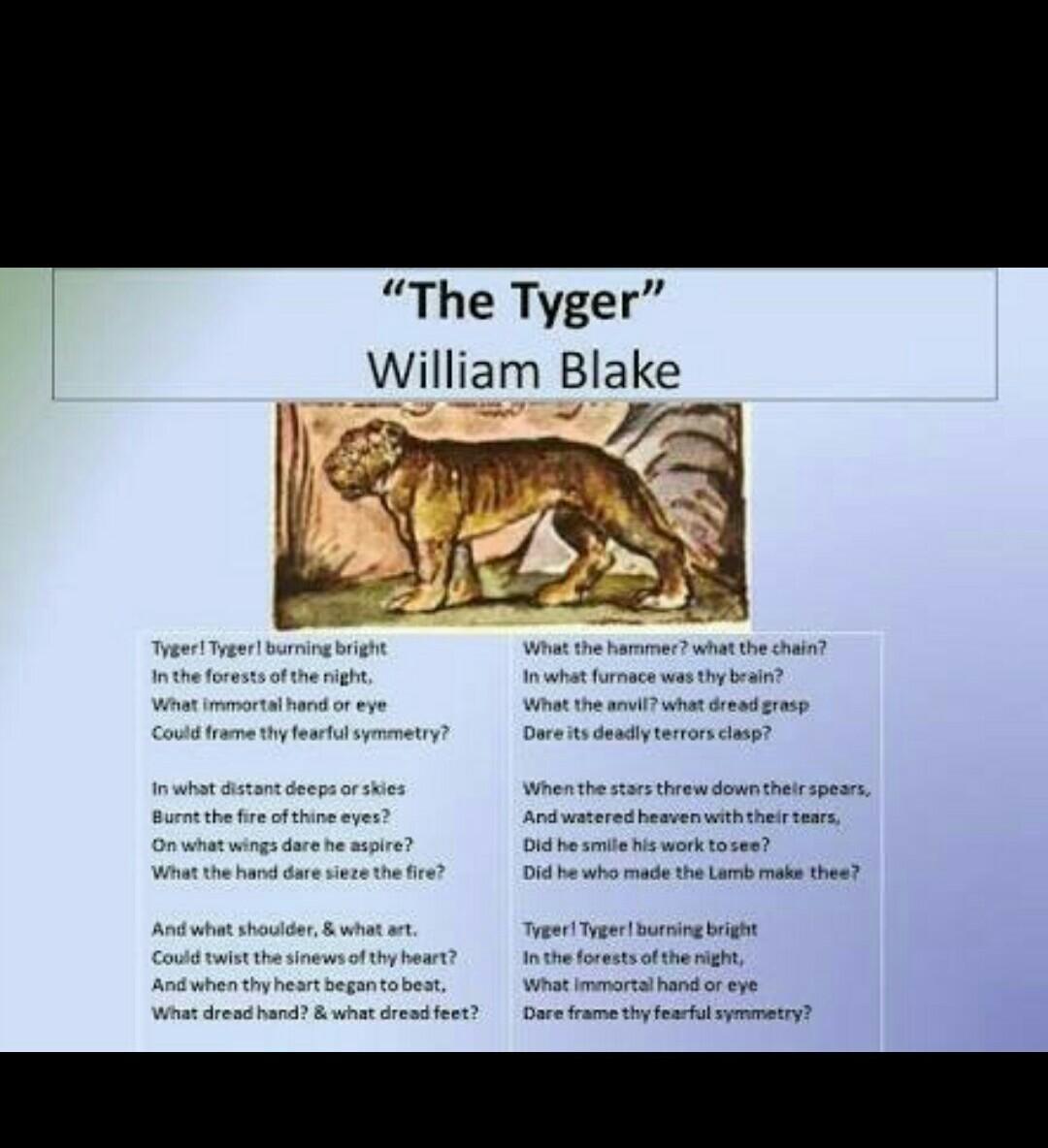 summary of poem the tyger by william blake