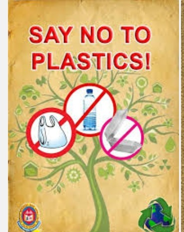 poster on say no to plastic bags brainly in