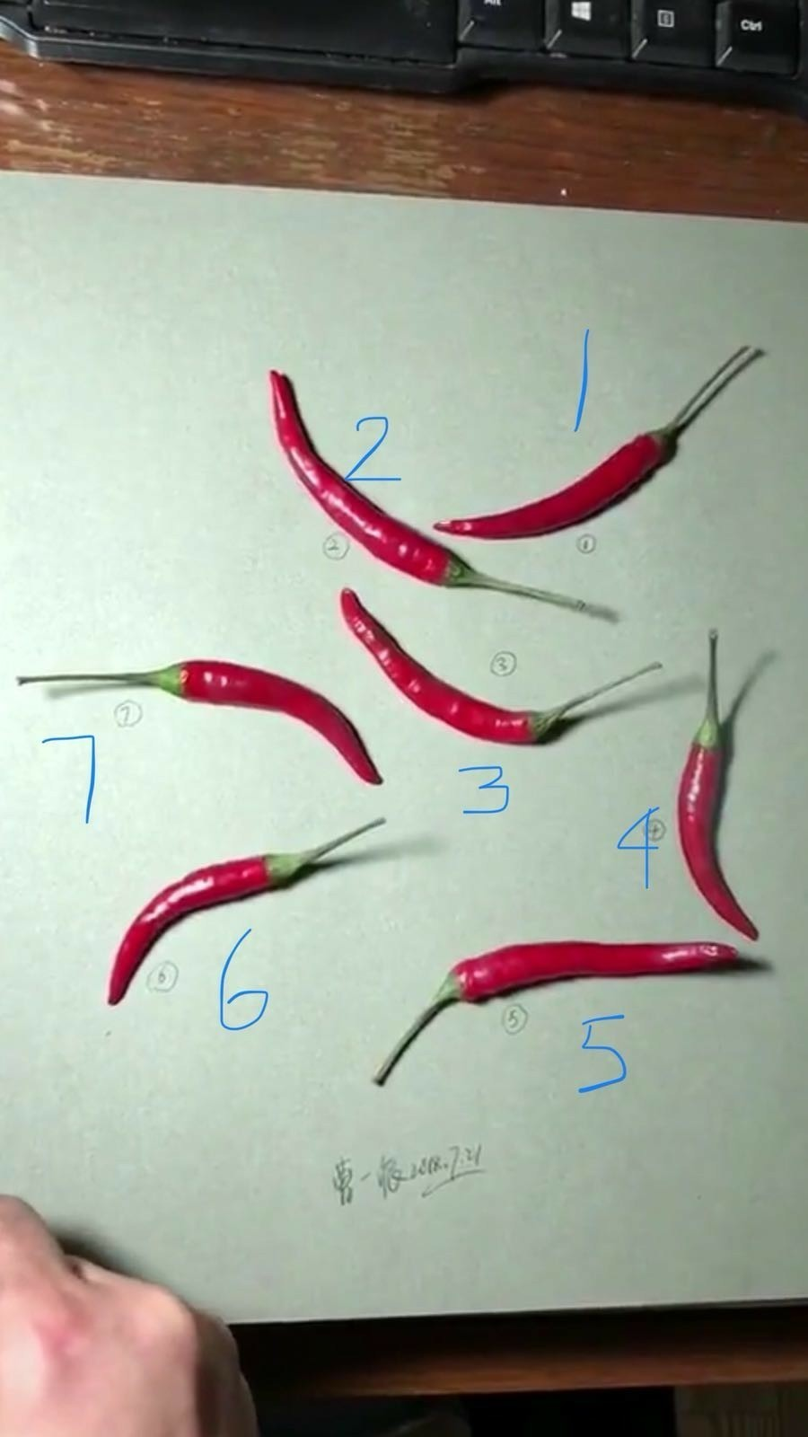 one chilli is a drawing the rest are real which one is a drawing