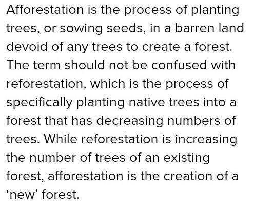 afforestation essay conclusion