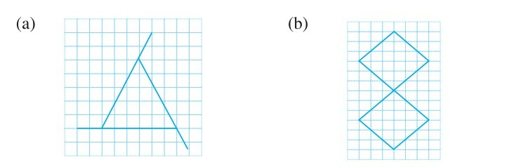Trace Each Figure And Draw The Lines Of Symmetry If Any Brainly In