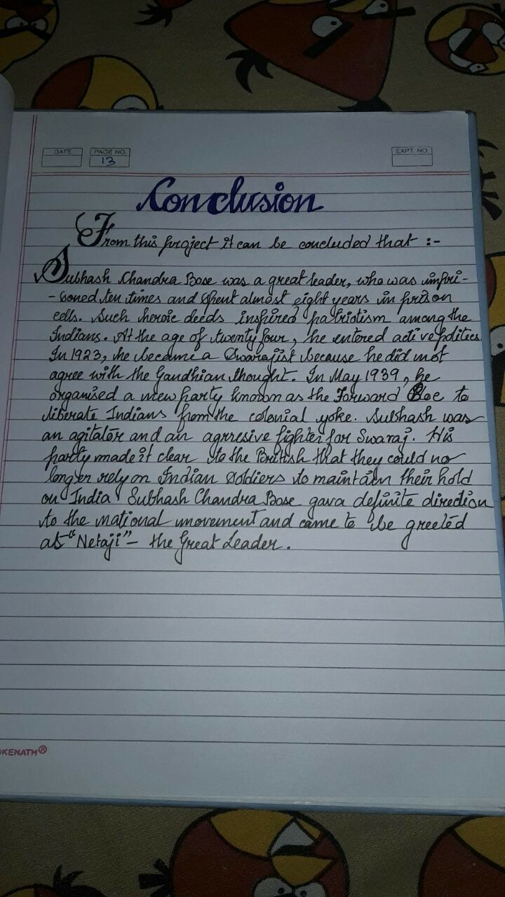 introduction for school project