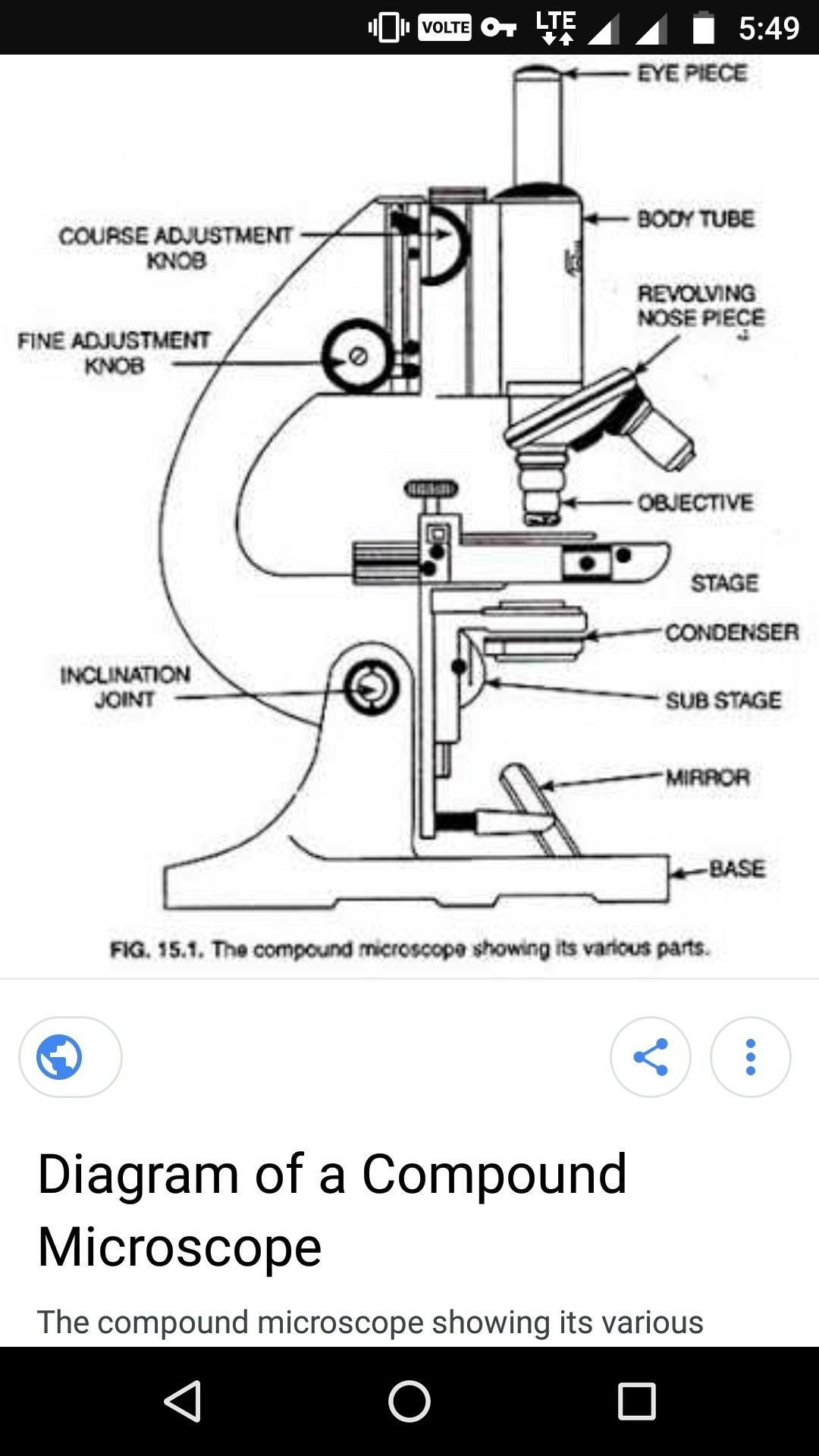Daigram of compound microscope brainly download jpg ccuart Gallery
