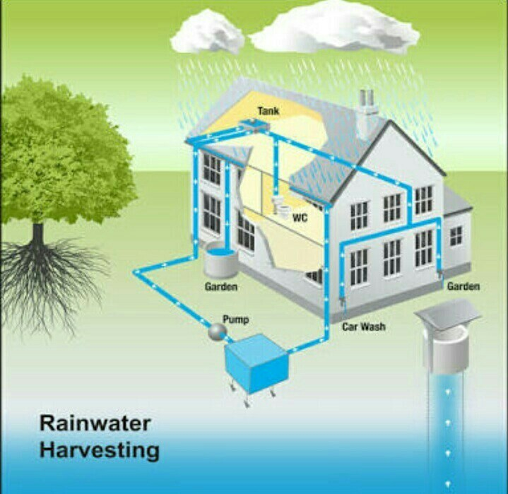 how to draw a well labeled drawing of rainwater harvesting