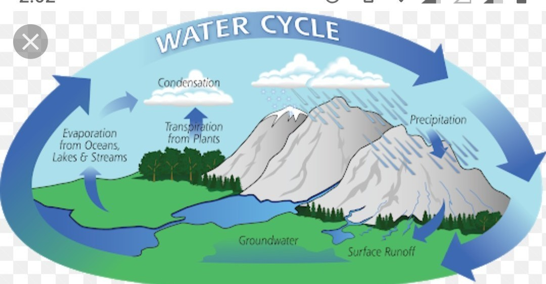 with the help of neat and labelled diagrams explain the hydrologicalExplain The Water Cycle With The Help Of Diagram #14