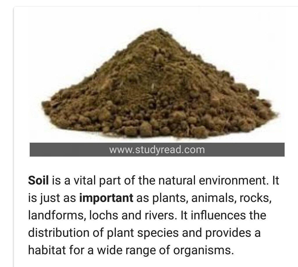 essay in hindi on importance of soil in human life - Brainly in