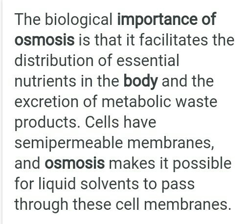 why is osmosis important to humans