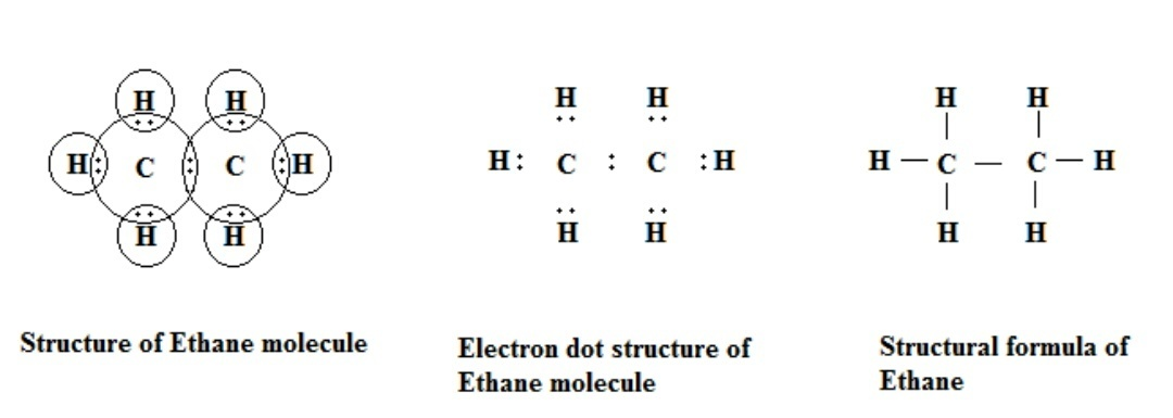write the electron dot structure of ethane molecule,C2H6