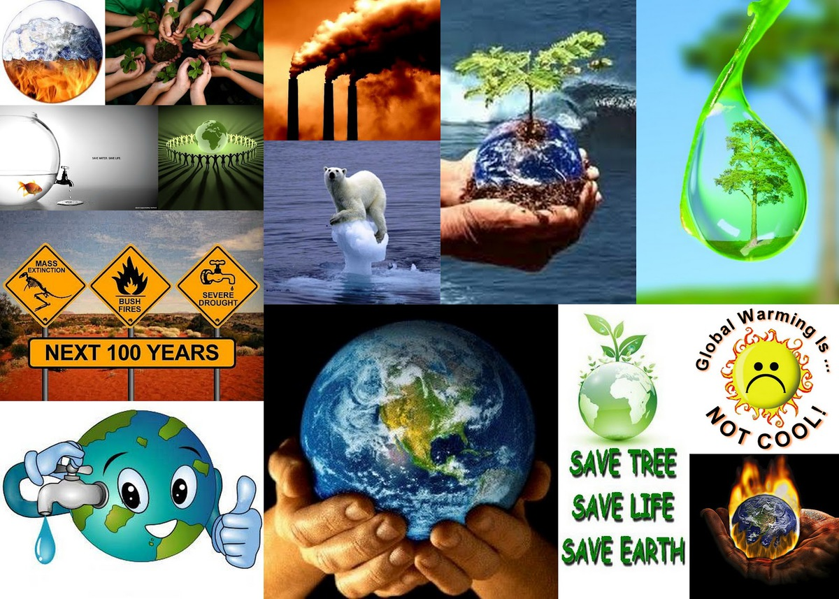 essay on save water save environment  essay on save water save environment