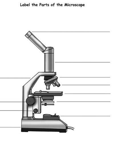 Label The Parts Of This Microscope Please Don T Give Other
