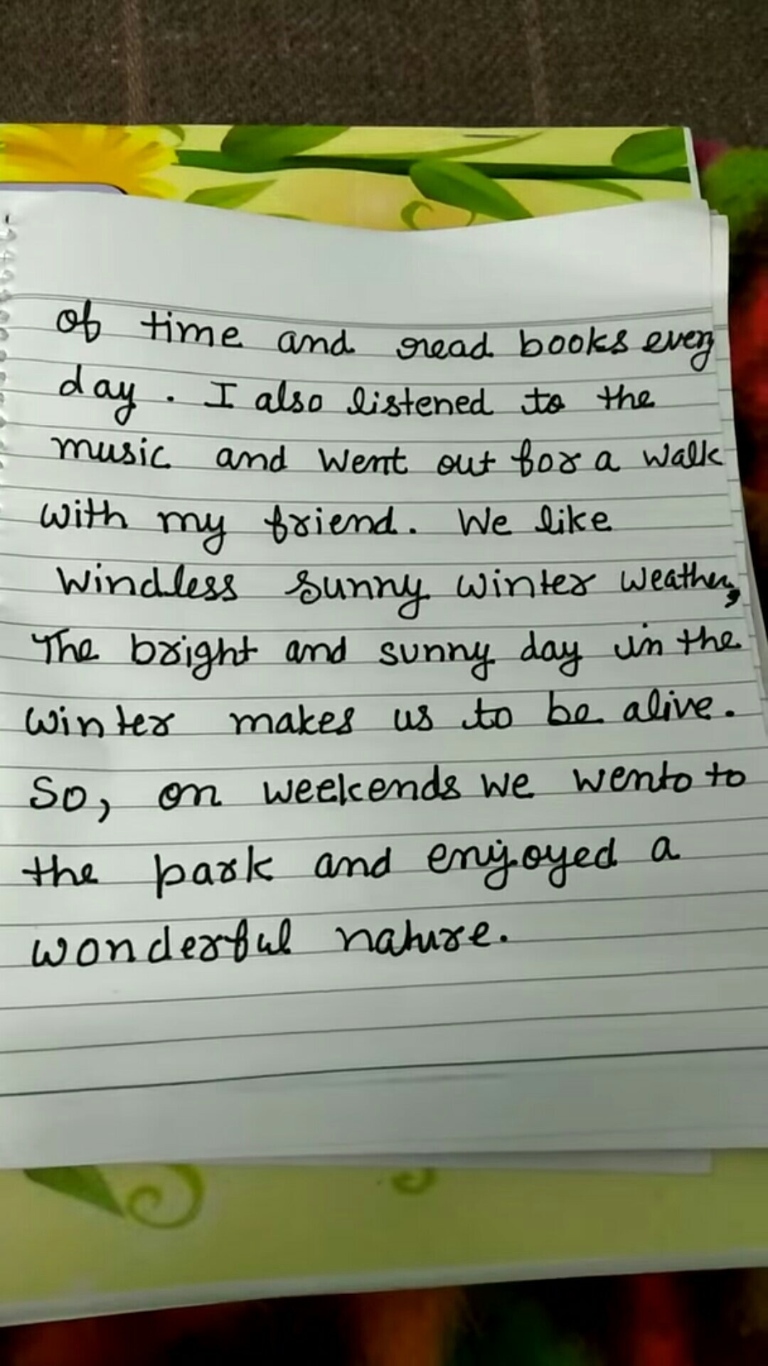 Essay my vacation