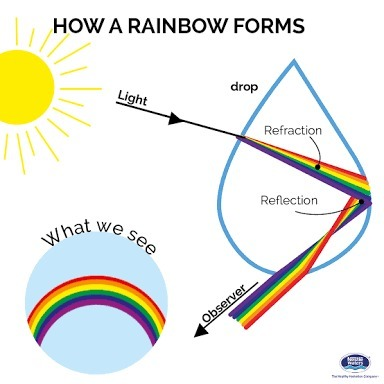 draw a ray diagram to show the formation of a rainbow and mark the Diagram of Rainbow Foods download jpg
